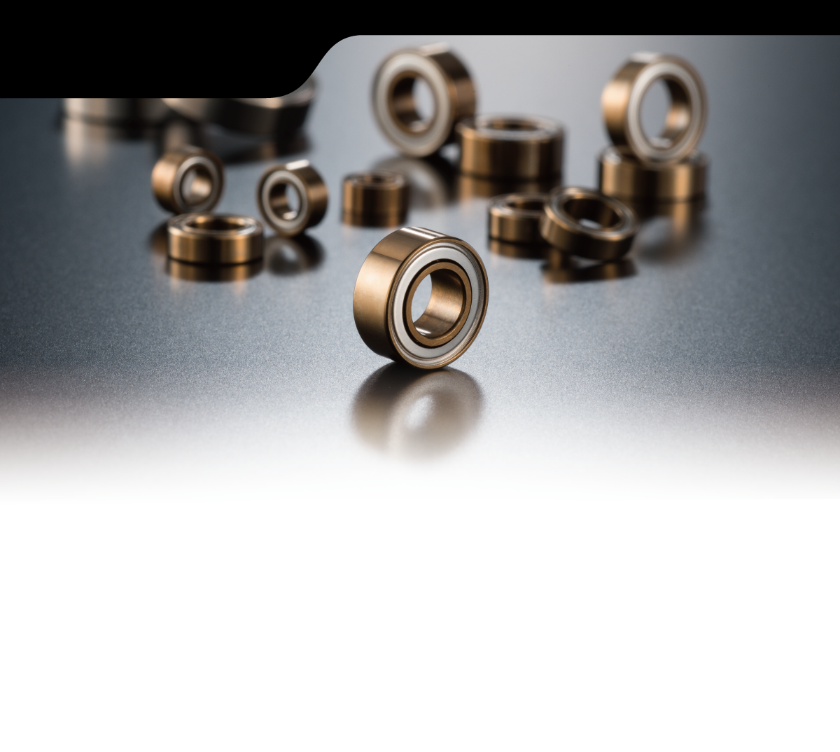 AXON BM-PG-021 X10 BALL BEARING 850 Flanged 2pic